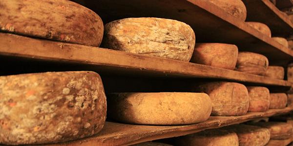 Historia del queso.