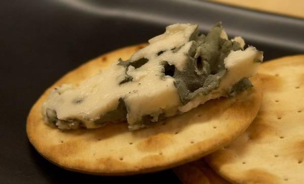 ¿Es bueno el moho en el queso?